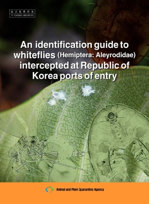 An identification guide to whiteflies (Hemiptera: Aleyrodidae) intercepted at Republic of Korea ports of entry