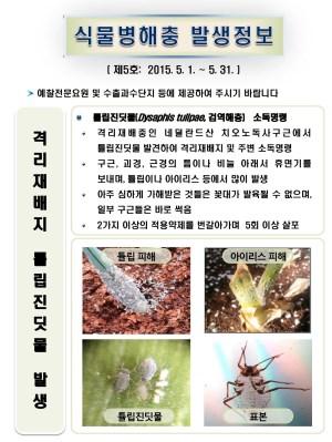 (2015년 5호) 식물병해충 발생정보
