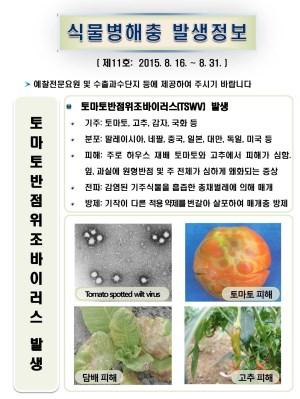 (2015년 11호) 식물병해충 발생정보