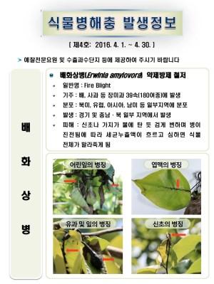 (2016년 4호) 식물병해충 발생정보