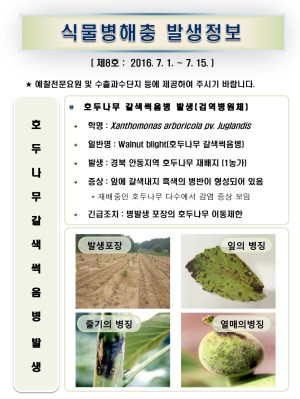 (2016년 8호) 식물병해충 발생정보