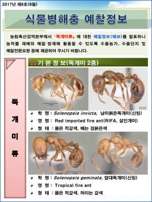 (2017년 8호) 식물병해충 발생정보