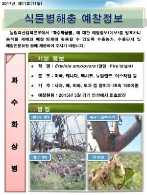 (2017년 11호) 식물병해충 발생정보
