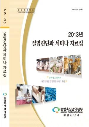 2013년 질병진단과 세미나 자료집