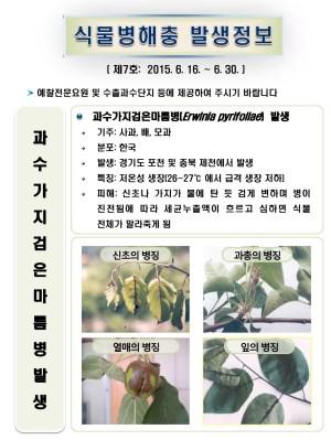 (2015년 7호) 식물병해충 발생정보
