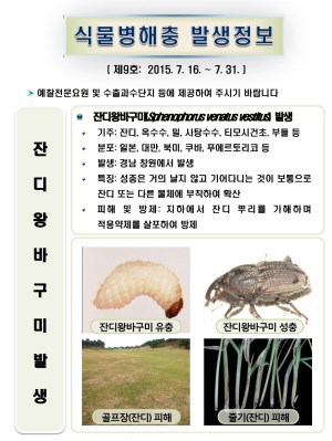(2015년 9호) 식물병해충 발생정보