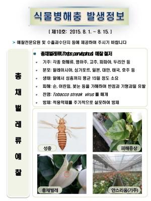 (2015년 10호) 식물병해충 발생정보
