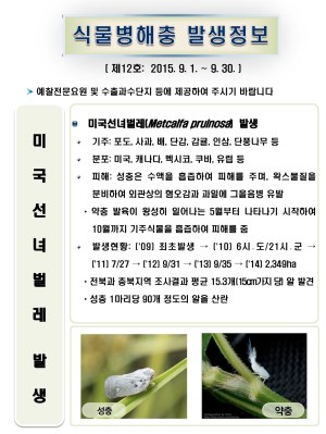 (2015년 12호) 식물병해충 발생정보