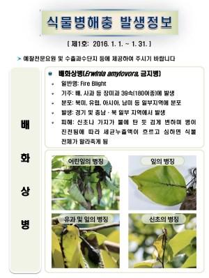 (2016년 1호) 식물병해충 발생정보
