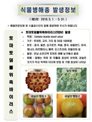 (2016년 5호) 식물병해충 발생정보