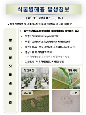 (2016년 10호) 식물병해충 발생정보