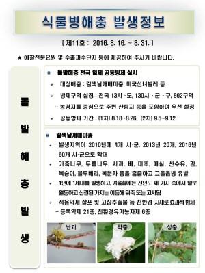 (2016년 11호) 식물병해충 발생정보