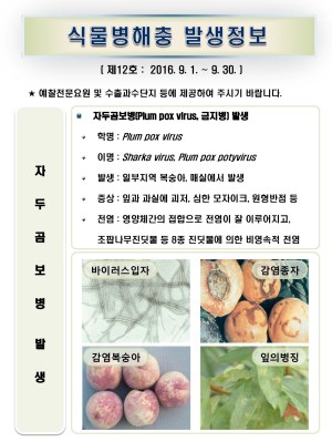 (2016년 12호) 식물병해충 발생정보