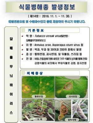 (2016년 14호) 식물병해충 발생정보