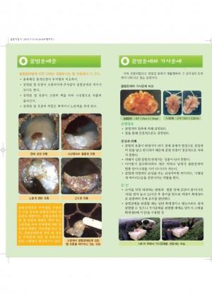 [2010]꿀벌질병 야외내검 지침서